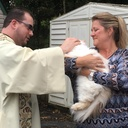 2017 Blessing of the Animals photo album thumbnail 4